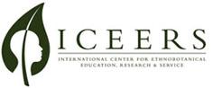 Logo_ICEERS